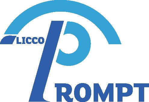 LICCO PROMT Umbrele Premium